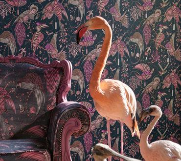 Clarke & Clarke Animalia Wallpaper Collection