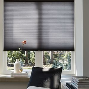 Duette Blinds and Home Automation